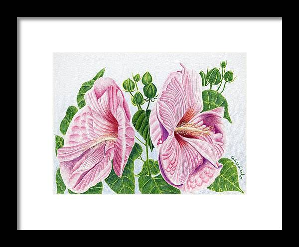 Floral Framed Print featuring the drawing Grandma by Wade Clark