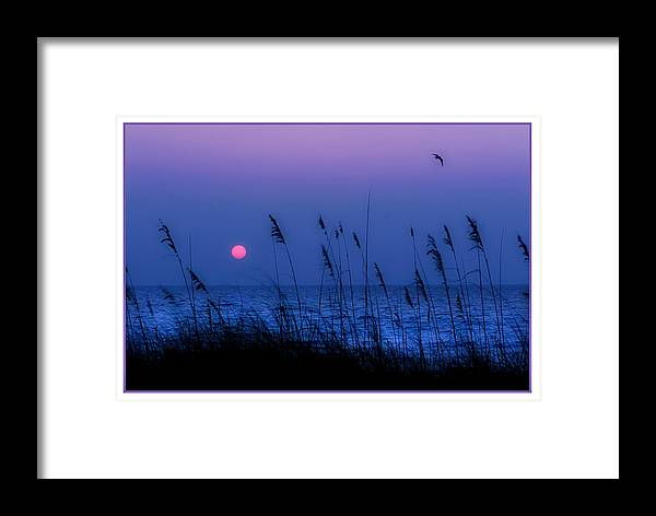 Grass Framed Print featuring the photograph Grasses Frame The Setting Sun In Florida by Mal Bray