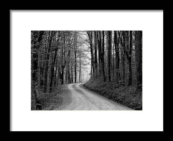 It's Serene To Be Driving Down A Gravel Road On A Foggy Morning. Framed Print featuring the photograph Gravel Lane by Jenny Gandert