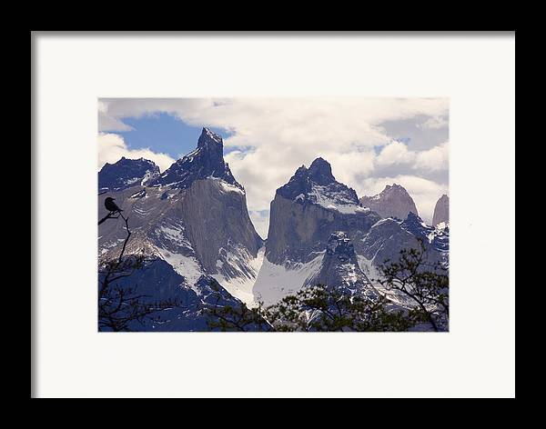 Gray Glacier Framed Print featuring the photograph Gray Glacier Chile by Charles Ridgway