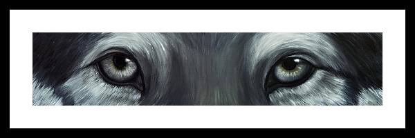 Eyes Framed Print featuring the painting Gray Wolf Eyes by Darlene Green