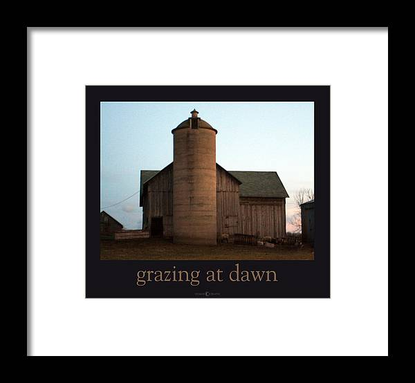 Barn Framed Print featuring the photograph Grazing at Dawn by Tim Nyberg