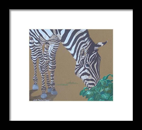 Zebra Framed Print featuring the painting Grazing At The Salad Bar by Anita Putman