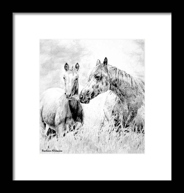 Horses Framed Print featuring the drawing Grazing by Barbara Widmann