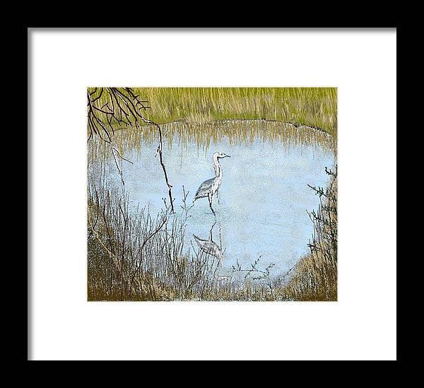 Bird Framed Print featuring the digital art Great Blue by Carole Boyd