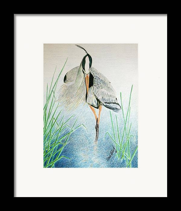 Animals Framed Print featuring the painting Great Blue Heron by Wade Clark