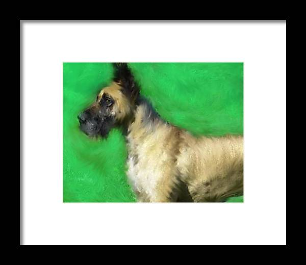 Great Dane Framed Print featuring the painting Great Dane Portrait by Enki Art