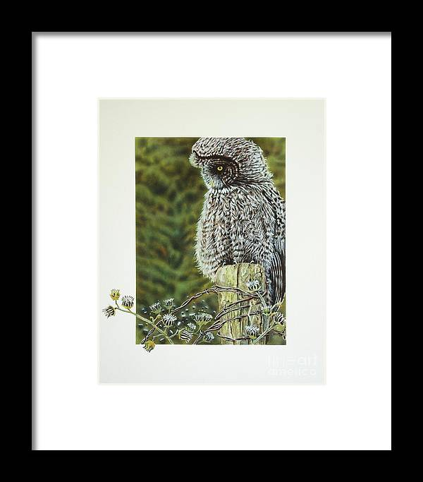 Owl Framed Print featuring the painting Great Grey Owl by Greg and Linda Halom