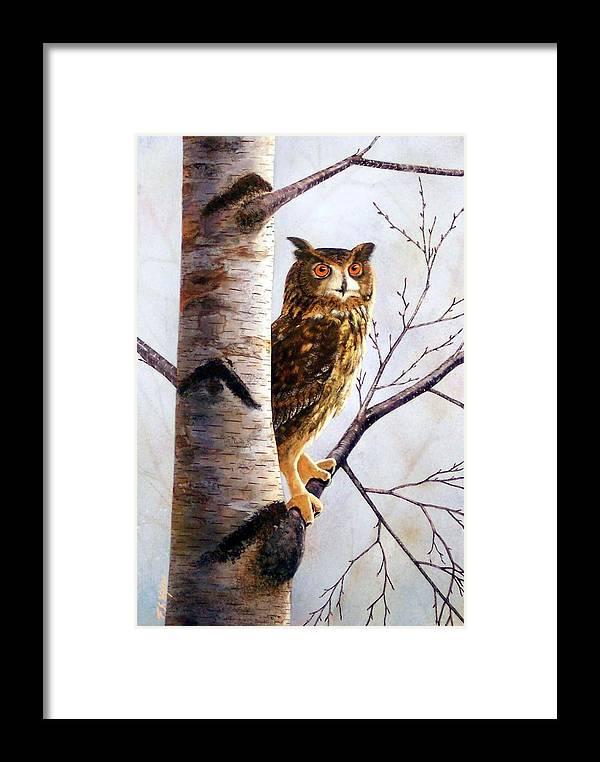 Great Horned Owl In Birch Framed Print featuring the painting Great Horned Owl In Birch by Frank Wilson