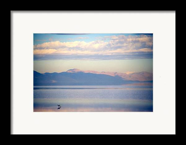 Lake Framed Print featuring the photograph Great Salt Lake Pastel Morning by Steve Ohlsen