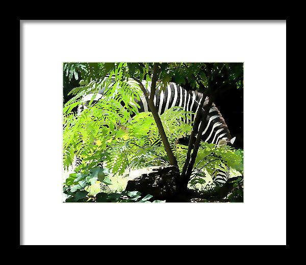 Zebra Behind Some Ferns In Great Light Framed Print featuring the digital art Green And Black Stripes by Leo Malboeuf