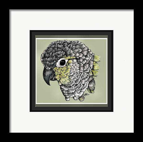Framed Print featuring the drawing Green Cheek by Crystal Rolfe