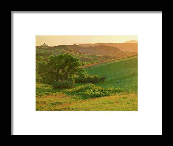 North Dakota Framed Print featuring the photograph Green Dakota Dream by Cris Fulton