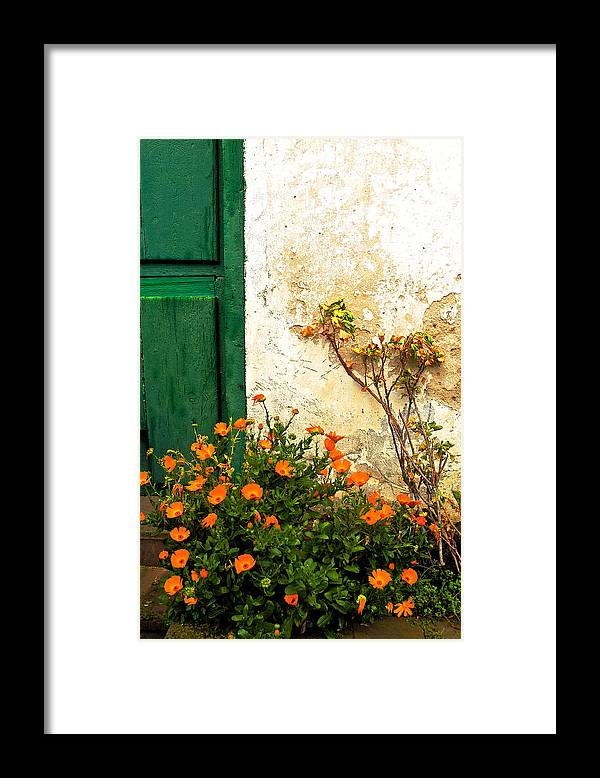 Green Door Framed Print featuring the photograph Green Door - Orange Flowers by Georgia Nick