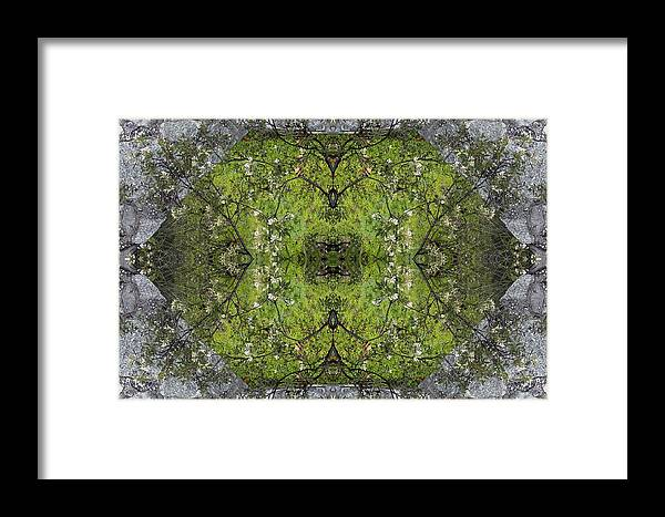 Green Framed Print featuring the photograph Green Mandala by Viktor Savchenko
