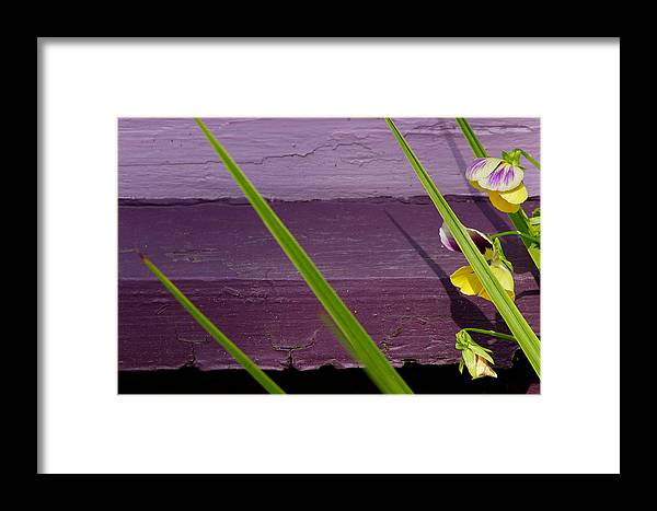 Abstract Framed Print featuring the photograph Green On Purple 6 by Art Ferrier