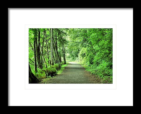 Green Framed Print featuring the photograph Green Path by J D Banks