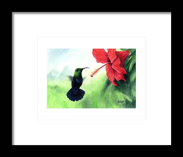 Chris Cox Framed Print featuring the painting Green-throated Carib Hummingbird And Red Hibiscus by Christopher Cox