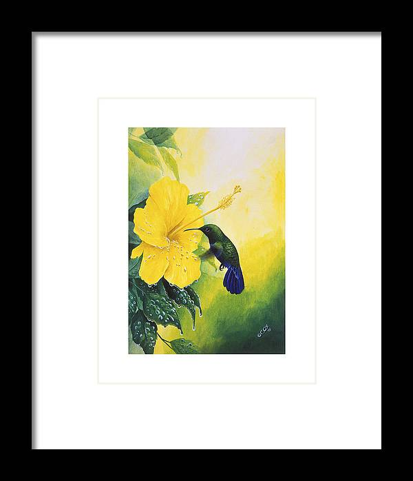 Chris Cox Framed Print featuring the painting Green-throated Carib Hummingbird And Yellow Hibiscus by Christopher Cox