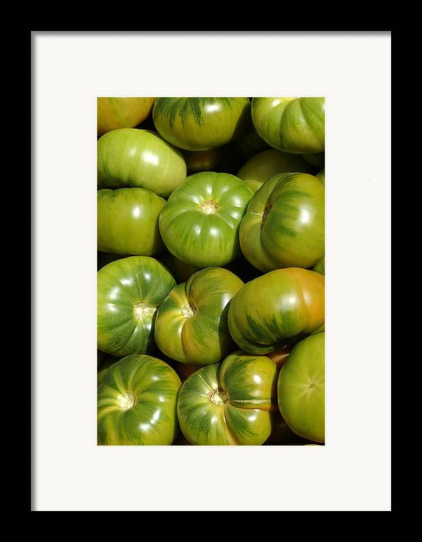 Green Framed Print featuring the photograph Green Tomatoes by Frank Tschakert