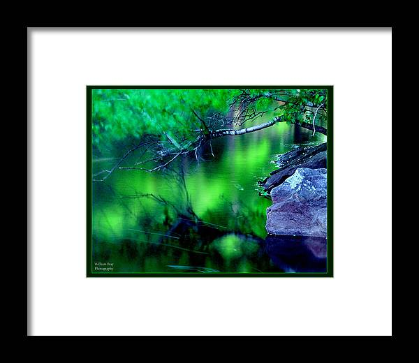 Water Framed Print featuring the photograph Greens 01 by William Bray