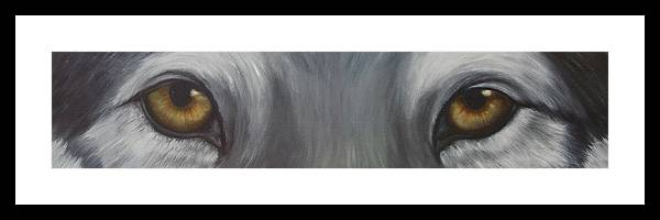 Wolf Framed Print featuring the painting Grey Wolf by Darlene Green
