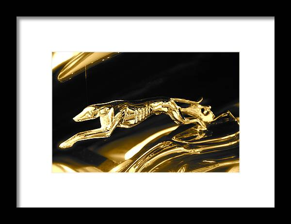 Greyhound Framed Print featuring the photograph Greyhound hoood ornament by Toni Berry