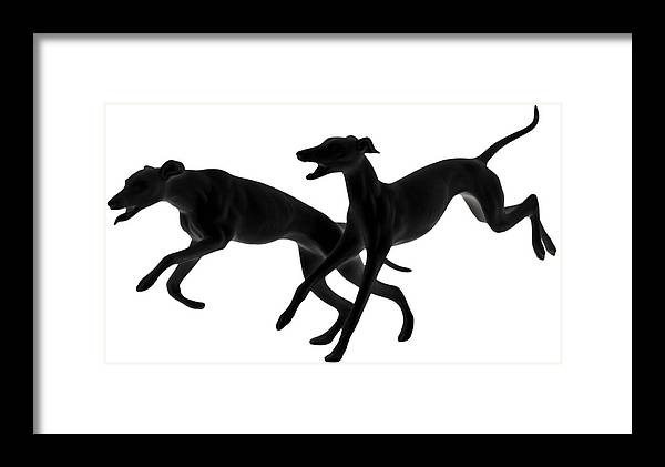 Greyhounds Framed Print featuring the photograph Greyhounds Travelling At 45 Mph by Christine Till