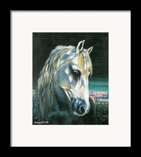Horse Framed Print featuring the painting Gringo Etalon Portugais by Josette SPIAGGIA