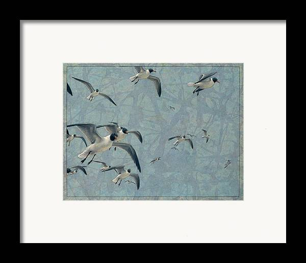 Gulls Framed Print featuring the painting Gulls by James W Johnson