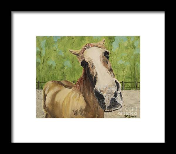 Horse Framed Print featuring the photograph Gunther by Valerie Ann Peterson