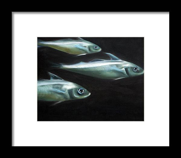 Haddock Framed Print featuring the painting Haddock by Fiona Jack
