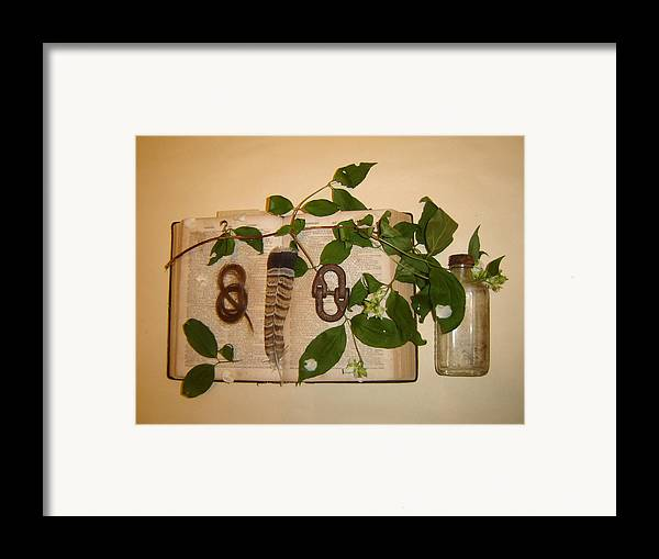 Still Life Framed Print featuring the photograph Hair Lock To June Flowering by Dean Corbin