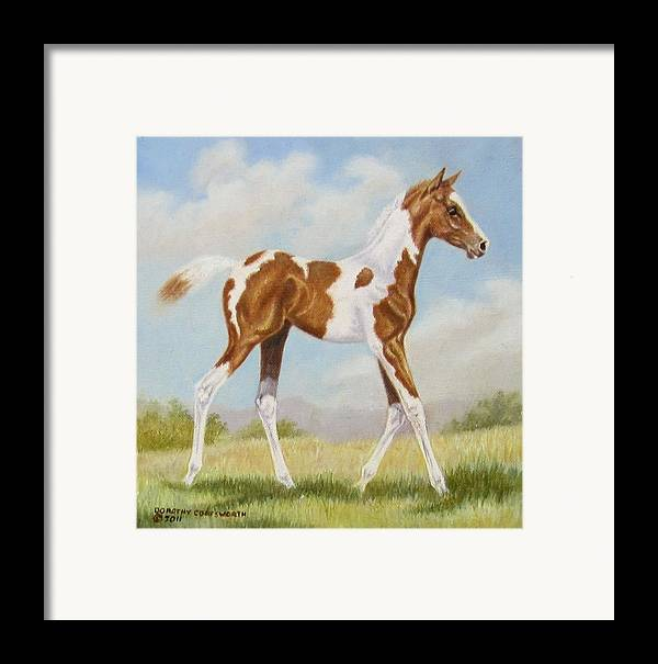 Horse Framed Print featuring the painting Half Arabian Pinto Filly by Dorothy Coatsworth