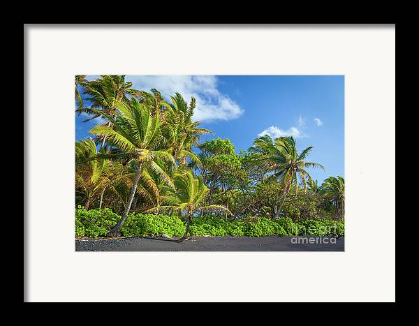 America Framed Print featuring the photograph Hana Palm Tree Grove by Inge Johnsson
