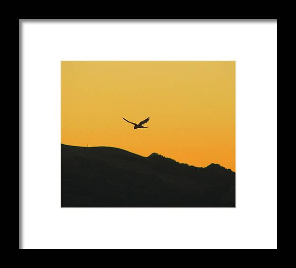 Sunset Framed Print featuring the photograph Hang Time by Kathy Roncarati