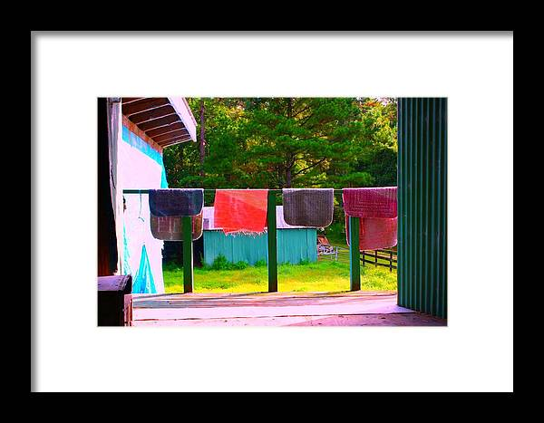 Colorful Framed Print featuring the photograph Hanging Out by Jill Tennison