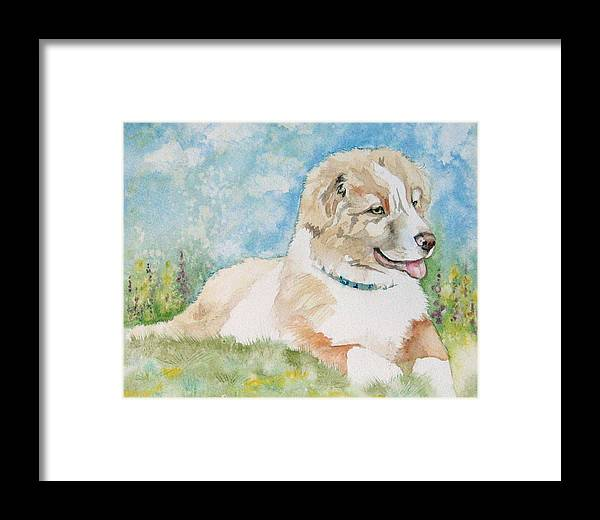 Canine Framed Print featuring the painting Hank by Gina Hall