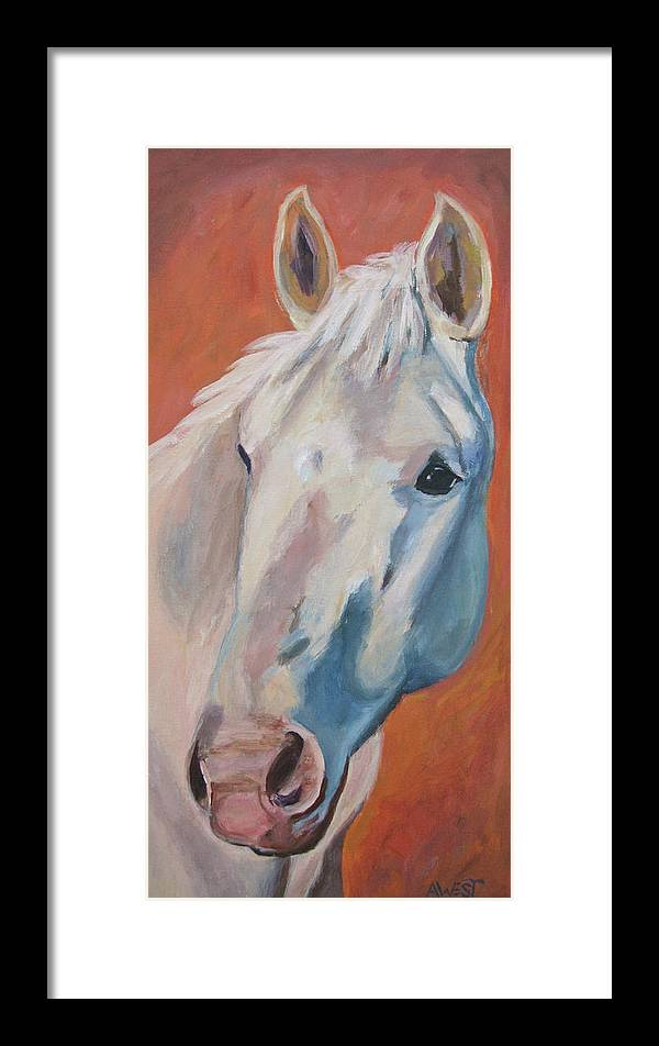 Horse Art Framed Print featuring the painting Hannocka by Anne West