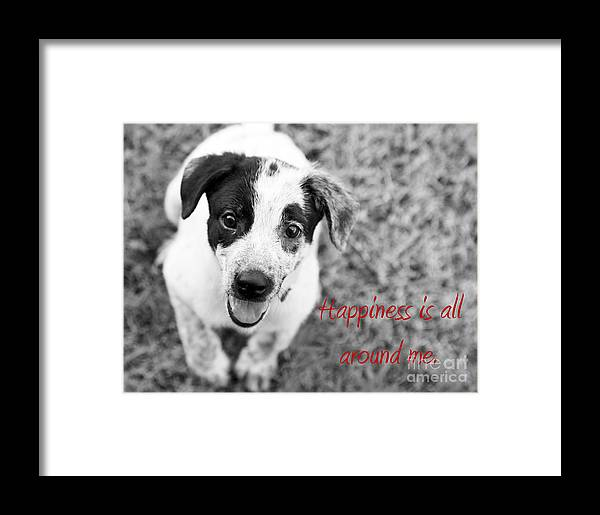 Puppy Framed Print featuring the photograph Happiness Is All Around Me by Amanda Barcon