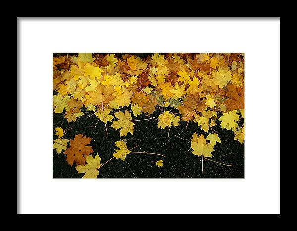 Fall Framed Print featuring the photograph Happy Fall by Mandy Wiltse