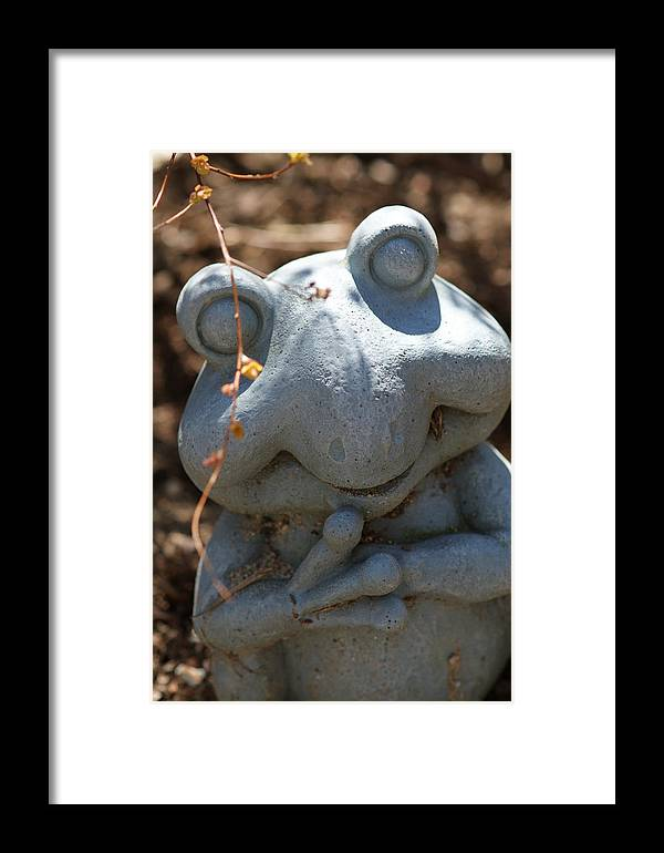 Frog Framed Print featuring the photograph Happy Garden Frog by Edward Myers