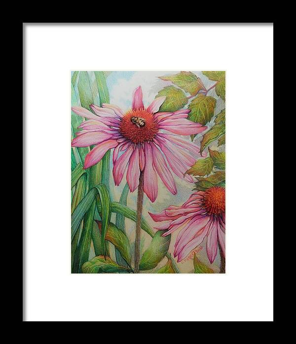 Bee Honey Bee Flower Garden Pink Green Wildlife Framed Print featuring the drawing Happy Honey Bee by Catherine Robertson