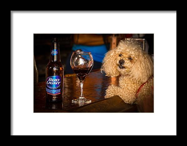 Animal Framed Print featuring the photograph Happy Hour by Paul LeSage