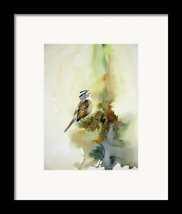 White-crowned Sparrow Framed Print featuring the painting Happy Sparrow by Lynne Parker