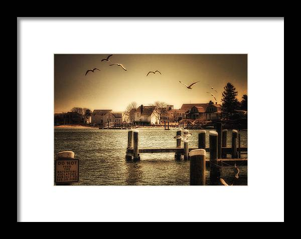 Cape Cod Framed Print featuring the photograph Harbor View by Gina Cormier
