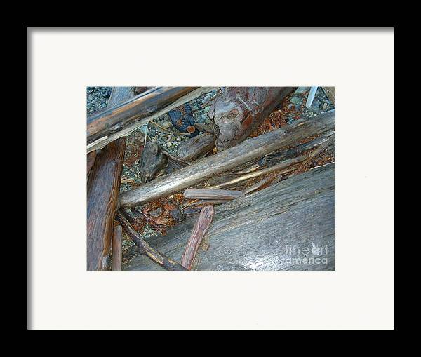 Driftwood Framed Print featuring the photograph Harrisson Driftwood by Jim Thomson
