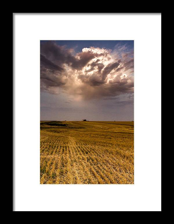 Jay Stockhaus Framed Print featuring the photograph Harvest by Jay Stockhaus