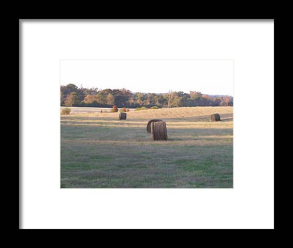 Hey Framed Print featuring the photograph Harvest Time by Paula Ferguson