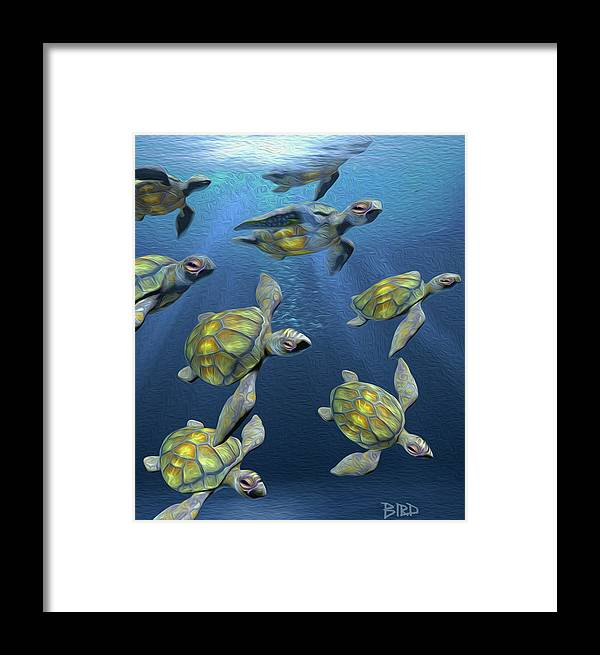 Sea Turtle Framed Print featuring the painting Hatchlings by Joseph Bird